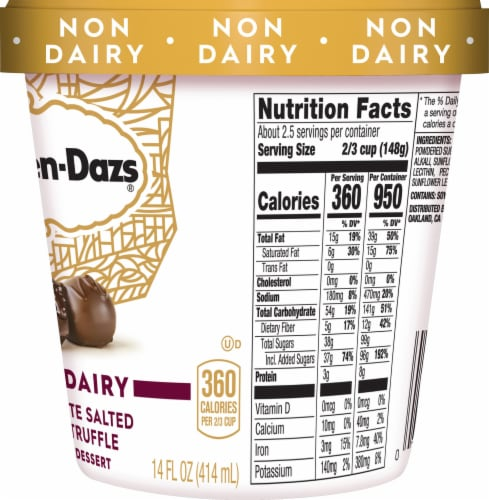 Haagen-Dazs Non-Dairy Gluten Free Chocolate Salted Fudge Truffle Frozen Dessert Perspective: right