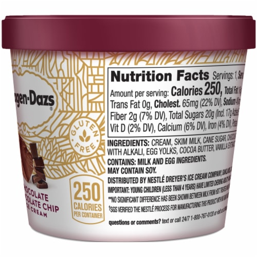 Haagen-Dazs Chocolate Chocolate Chip Ice Cream Cup Perspective: right