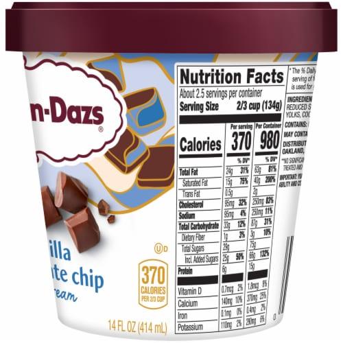 Haagen-Dazs Vanilla Chocolate Chip Ice Cream Perspective: right