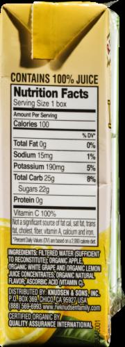 R.W. Knudsen Organic Lemonade Juice Box Perspective: right