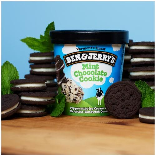 Ben & Jerry's Mint Chocolate Cookie Ice Cream Perspective: right