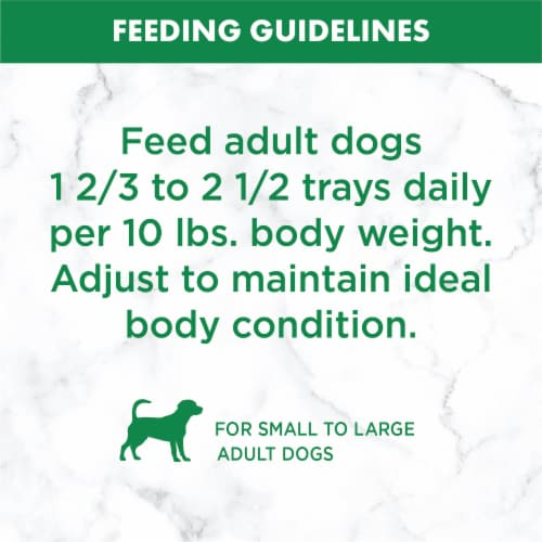 Nutro Grain Free Cuts in Gravy Chicken Sweet Potato & Pea Stew Wet Dog Food Perspective: right