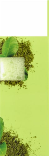 Freeman Deep Cleansing Green Tea Soap-Infused Sponge Perspective: right