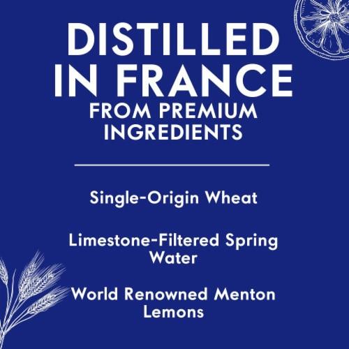 Grey Goose Le Citron Vodka Perspective: right