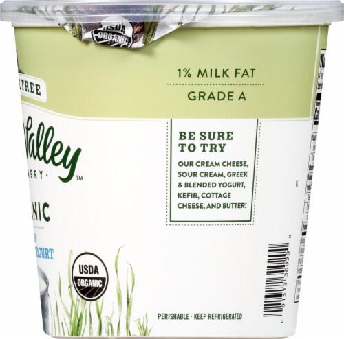 Green Valley Organic Lactose Free Plain Lowfat Yogurt Perspective: right