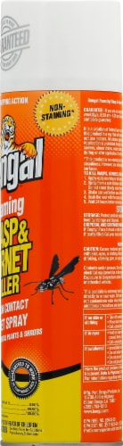 Bengal Foaming Wasp and Hornet Killer Spray Perspective: right