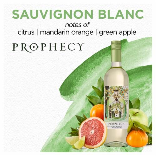Prophecy Sauvignon Blanc White Wine Perspective: right