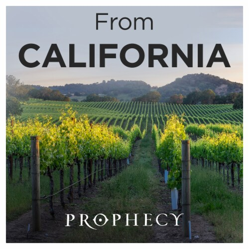 Prophecy Cabernet Sauvignon Red Wine Perspective: right