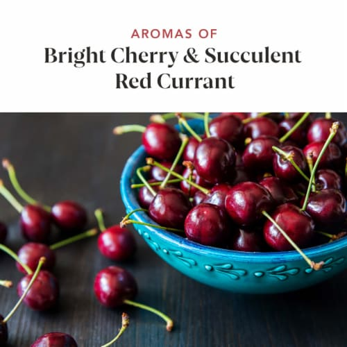 14 Hands Hot To Trot Red Blend Wine Perspective: right