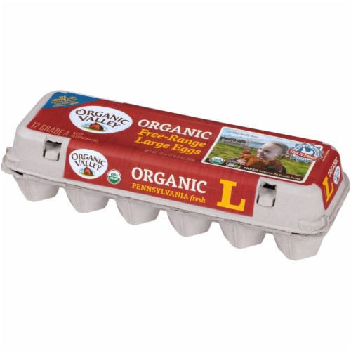 Organic Valley Free Range Grade A Large Brown Eggs Perspective: right