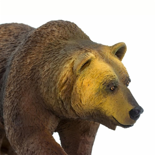 Grizzly Bear Perspective: right