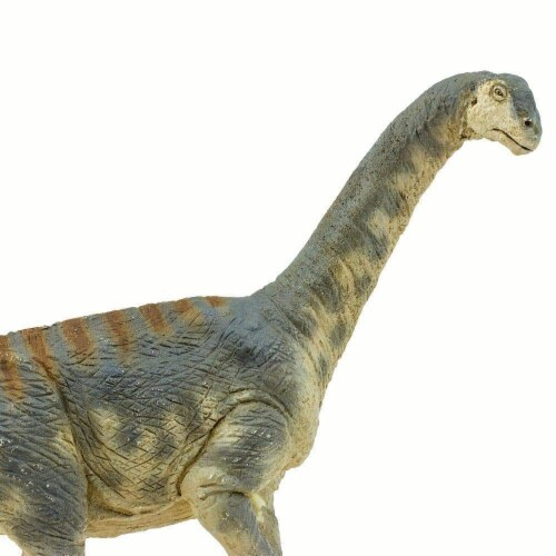 Camarasaurus Toy Perspective: right