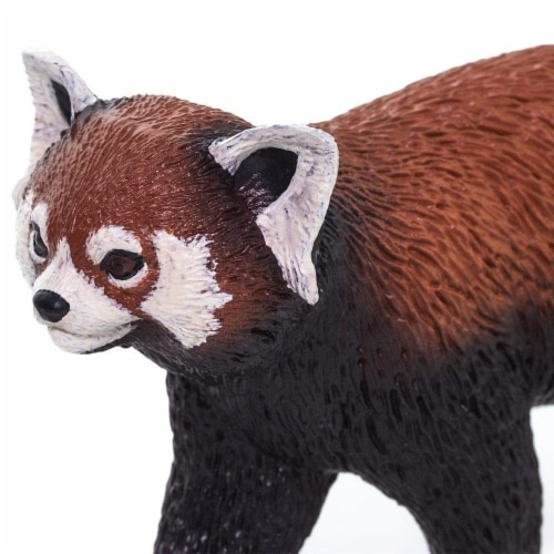Red Panda Perspective: right