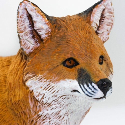 Red Fox Perspective: right