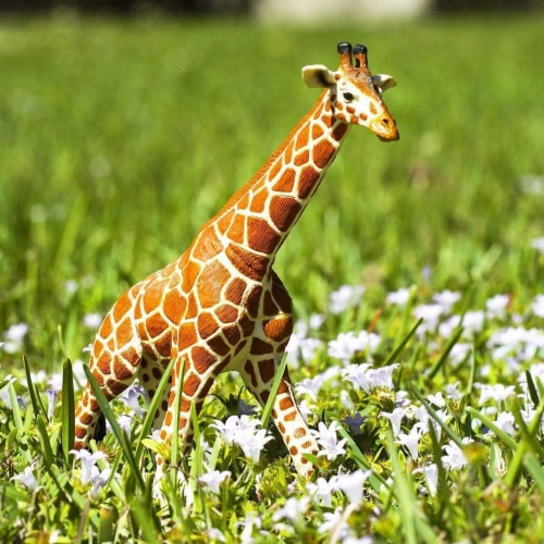 Reticulated Giraffe Toy Perspective: right