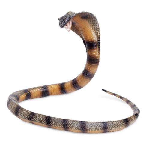 Cobra Perspective: right
