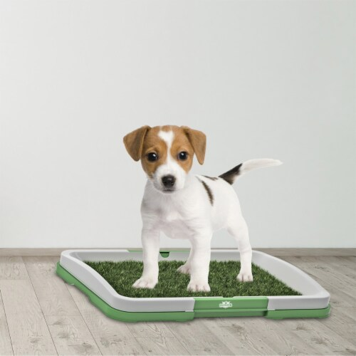Puppy Potty Trainer- Artificial Grass Mat, Tray & 5 Extra Replacement Turf Pads Perspective: right