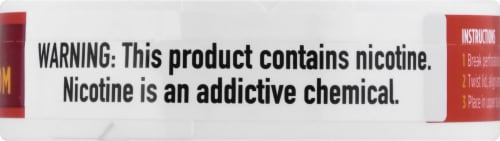 ZYN Cinnamon 3mg Nicotine Pouches Perspective: right