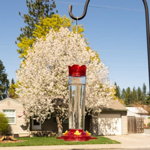 MEKKAPRO Outdoor Hummingbird Feeder Made from Glass, 5 Nectar Feeding Stations (20 Ounce) Perspective: right