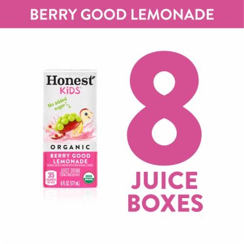Honest Kids Organic Berry Good Lemonade Perspective: right