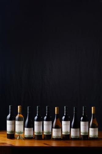 McManis Family Vineyards Pinot Grigio White Wine Perspective: right