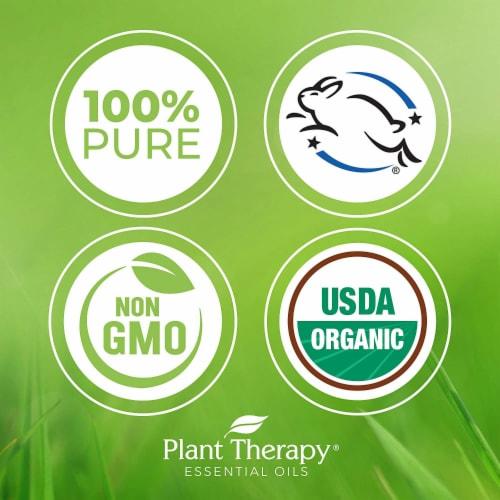 Plant Therapy Diffusible Essential Oil, 3.3 Oz, Organic Frankincense Serrata Perspective: right