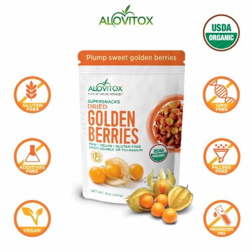 Certified Organic Sun Dried Golden Berries 8 oz | Raw, Vegan, Gluten Free Super Snack Perspective: right