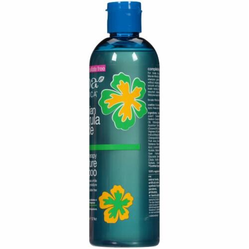 Alba Botanica Hawaiian Marula Miracle Moisture Shampoo Perspective: right