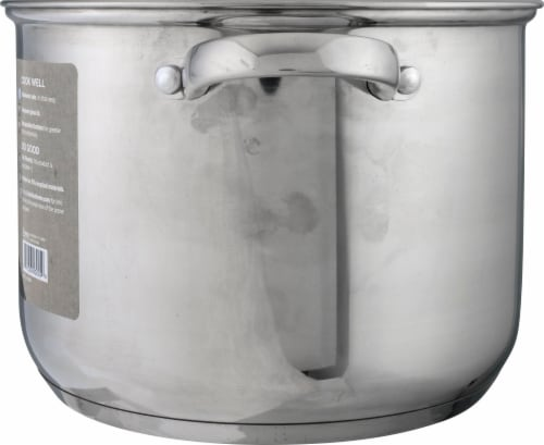 Ecolution Pure Intentions Polished Stockpot Perspective: right