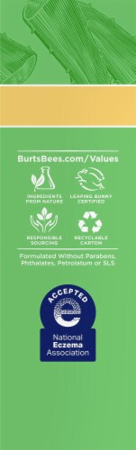 Burt's Bees Daily Moisturizing Cream Perspective: right