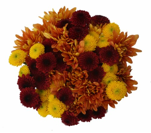 Jumbo Poms Assorted Bouquet Perspective: right