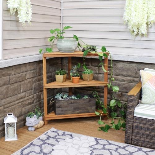 Sunnydaze Meranti Wood Teak Oil Finish 3-Tier Indoor/Outdoor Corner Plant Stand Perspective: right