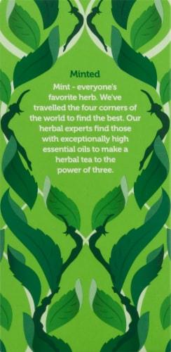 Pukka Organic Three Mint Herbal Tea Sachets Perspective: right
