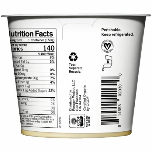 Forager Project Organic Dairy-Free Lemon Cashewmilk Yogurt Alternative Perspective: right