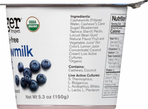 Forager Project Organic Dairy-Free Blueberry Cashewmilk Yogurt Alternative Perspective: right