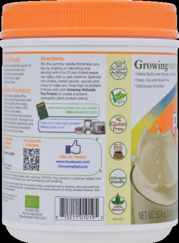 GrowingNaturals Vanilla Blast Organic Rice Protein Powder Perspective: right