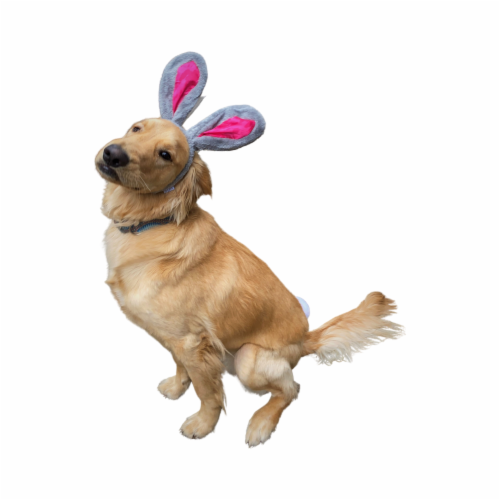 Midlee Easter Bunny Gray & Pink Rabbit Ears for Large Dogs Headband With Tail Perspective: right