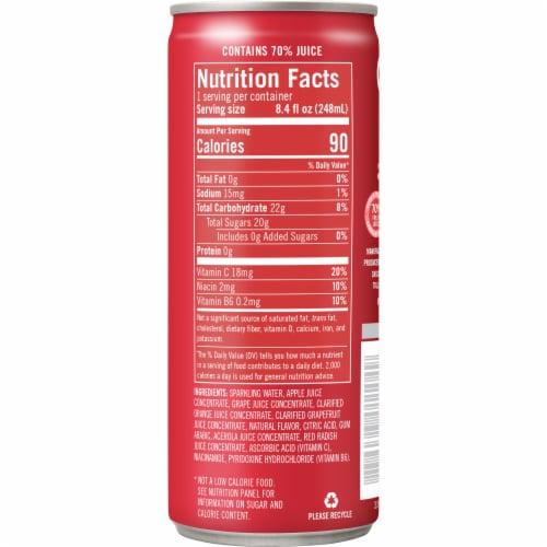 IZZE Sparkling Juice Grapefruit Flavored Juice Drink Perspective: right