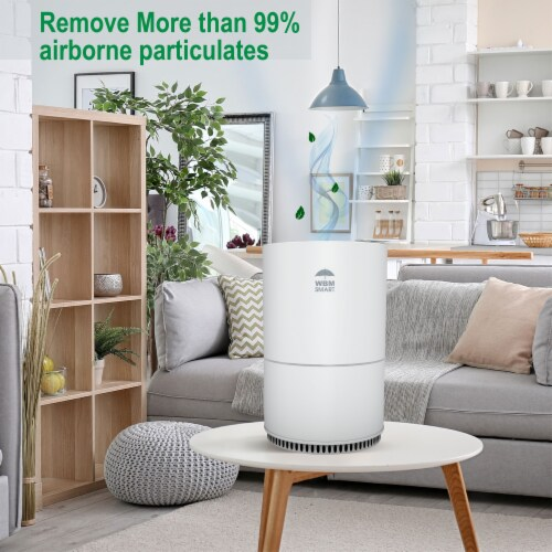 WBM International Air Purifier - White Perspective: right