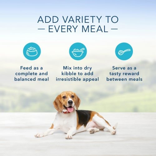 Blue Buffalo Homestyle Recipes Healthy Weight Chicken with Garden Vegetables Wet Dog Food Perspective: right