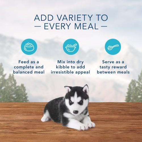 Blue Wilderness Puppy Turkey & Chicken Grill Wet Dog Food Perspective: right