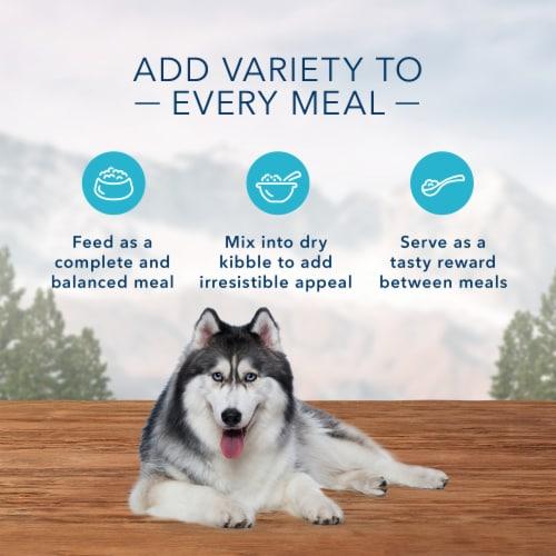 Blue Wilderness Turkey & Chicken Grill Wet Senior Dog Food Perspective: right