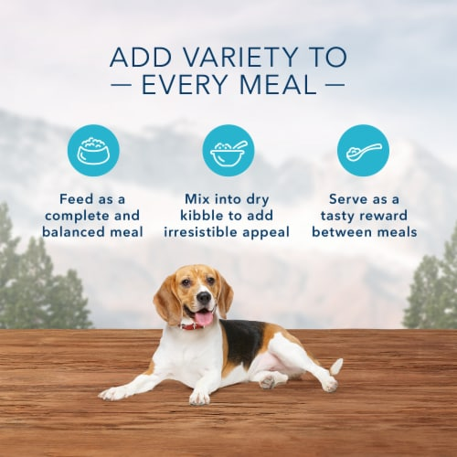 Blue Wilderness Turkey & Chicken Grill Healthy Weight Wet Dog Food Perspective: right