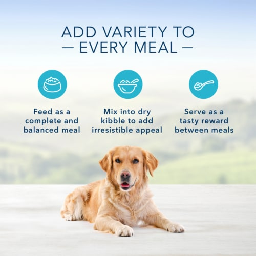 Blue Buffalo Chicken Dinner Homestyle Recipe Natural Dog Food Perspective: right