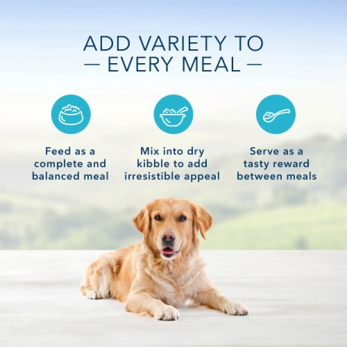Blue Buffalo Blue's Stew Hearty Beef Stew Wet Dog Food Perspective: right