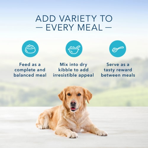 Blue Buffalo Family Favorite Recipes Backyard BBQ Dinner Wet Dog Food Perspective: right