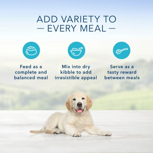 Blue Buffalo Homestyle Recipe Chicken Dinner with Garden Vegetables Wet Puppy Food Perspective: right