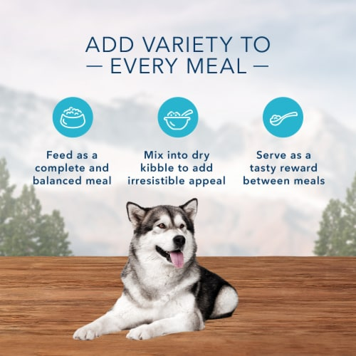 Blue Wilderness Chicken & Salmon Grill Wet Dog Food Perspective: right