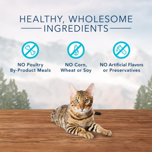 Blue Wilderness Salmon Flavor Crunchy Cat Treats Perspective: right