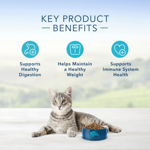 Blue Buffalo Healthy Living Chicken & Brown Rice Adult Dry Cat Food Perspective: right